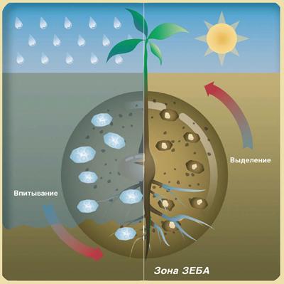 Такое конструктивное выполнение позволит обеспечить требуемое качество крошения почвы при различных рабочих скоростях